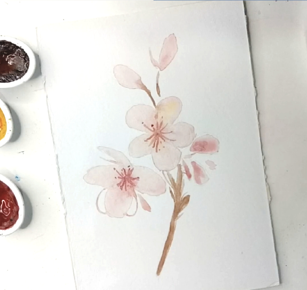Cherry Blossom Painting Watercolor 6